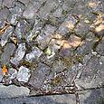 Washington_st_sidewalk_3