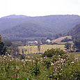 Looking_west_from_upper_pasture