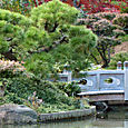 Brooklyn_botanic_garden_4