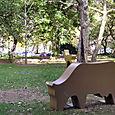 City_hall_park_2_500