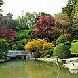 Brooklyn_botanic_garden_3