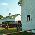 Swift Level Farm 4