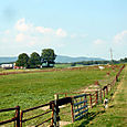 Swift Level Farm 5