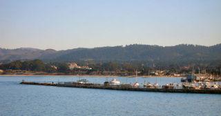 Municipal Fisherman's Wharf 001_1