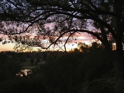Evening3_400