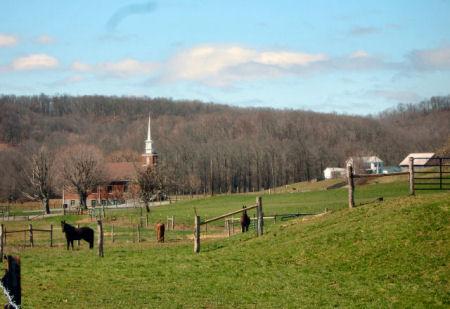 Horses on Dawson Road 004 B450