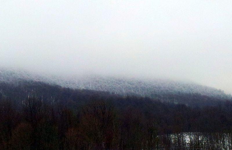 Winter fog Bluefield WV 900px