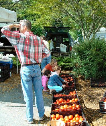 Lewisburg_farmers_market_55_1a
