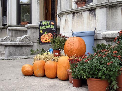 Halloween_1_500
