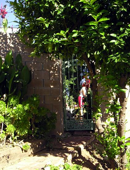 Brick Walk - View Into Back Garden